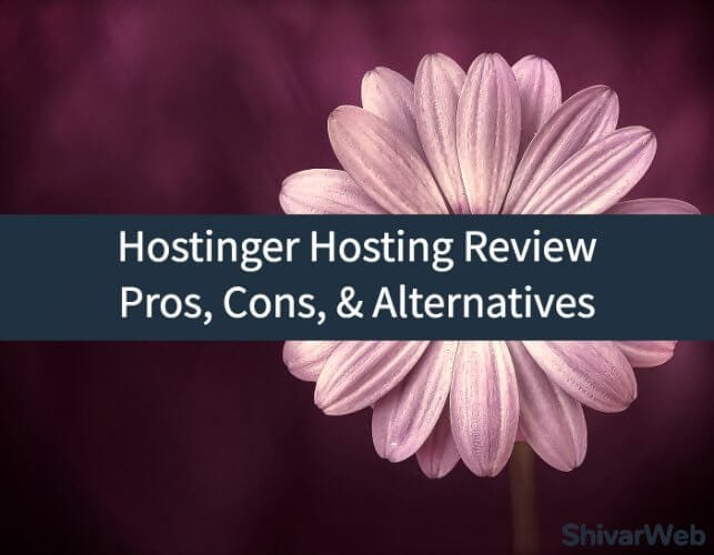 Hostinger Hosting Review_ Pros, Cons, & Alternatives