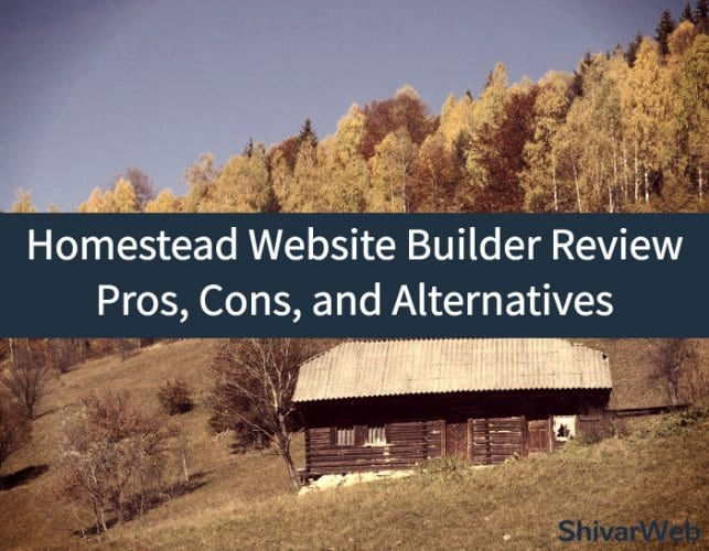 Homestead Website Builder Review_ Pros, Cons, and Alternatives