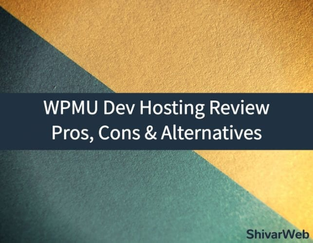 WPMU Dev Hosting Review