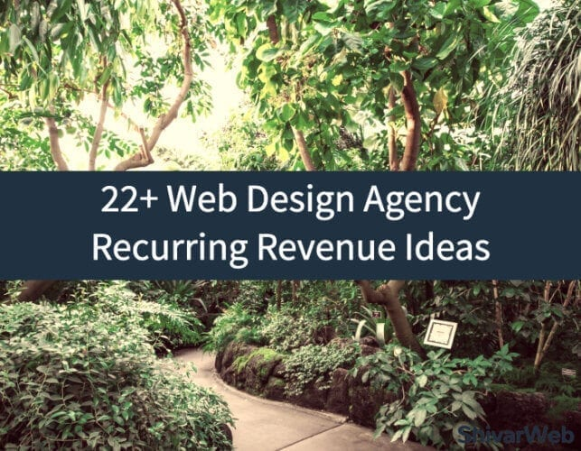 Web Design Agency Recurring Revenue Ideas