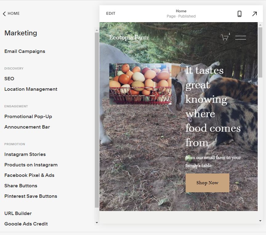 Screengrab of Squarespace marketing options