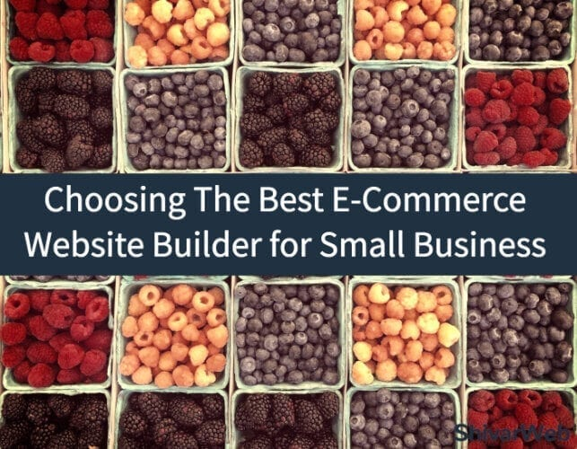 How To Choose The Best E-Commerce Website Builder for Small Business